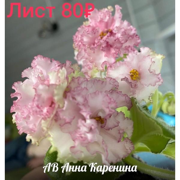 АВ Анна Каренина