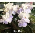 BOO MEN