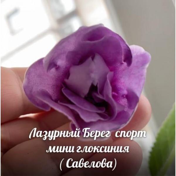 Лазурный берег Савелова