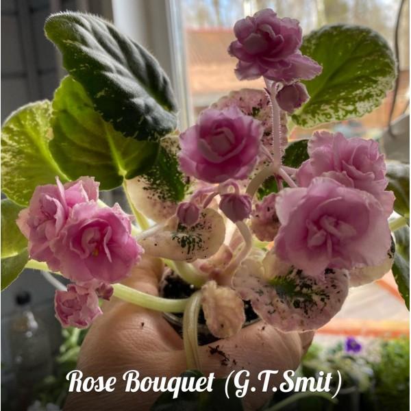 Rose bouguet (Smit)