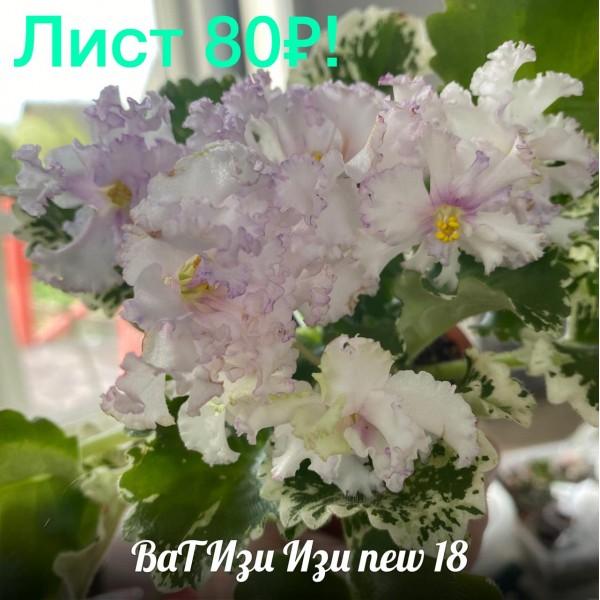 ВАТ Изи изи new 18